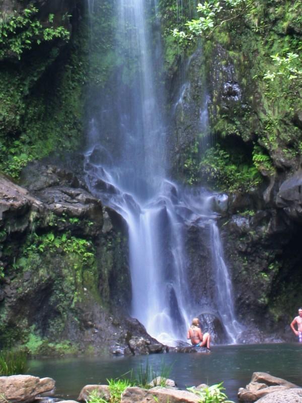 Waikamoi Stream & Waterfalls