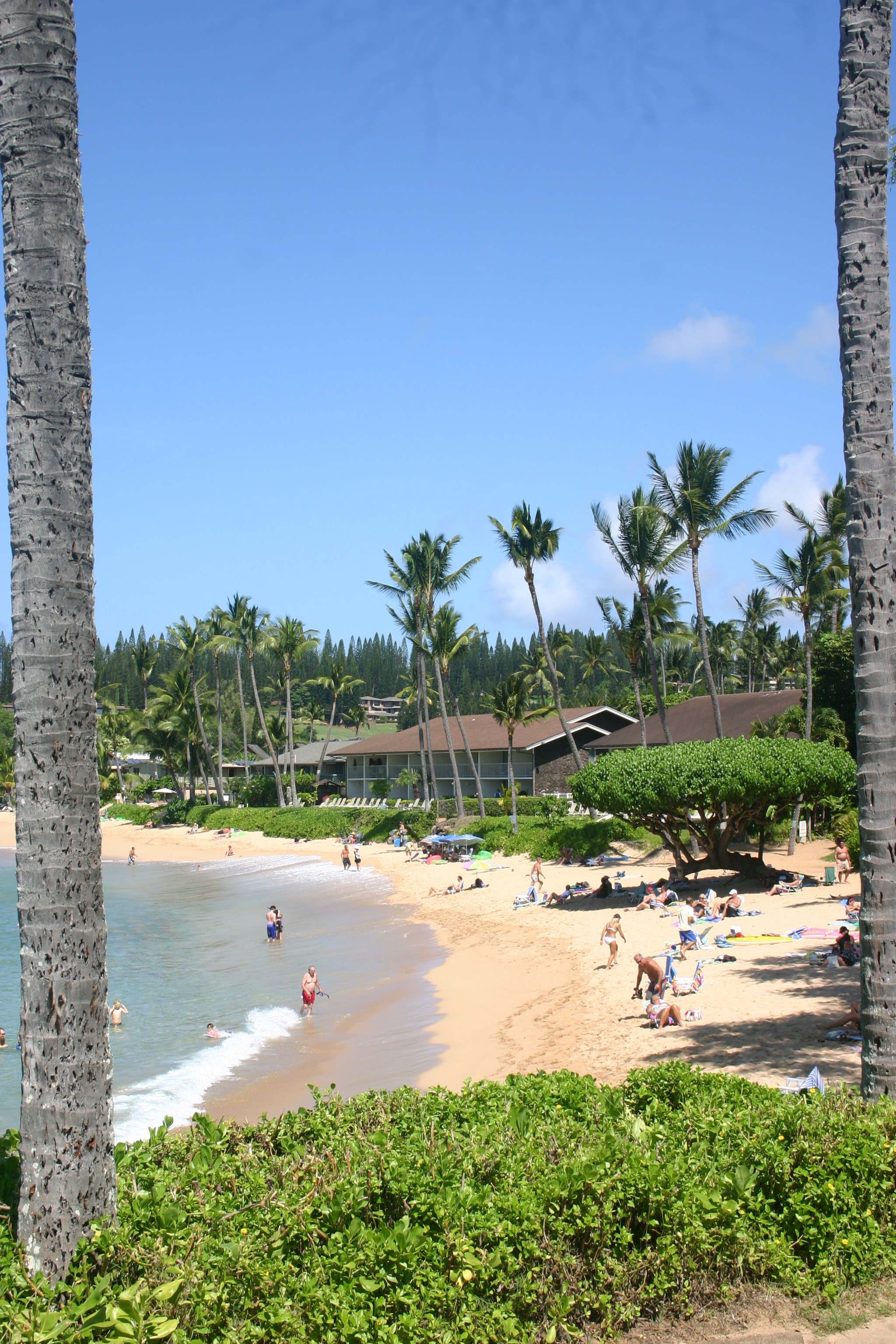 Napili Beach Is Postcard Perfect