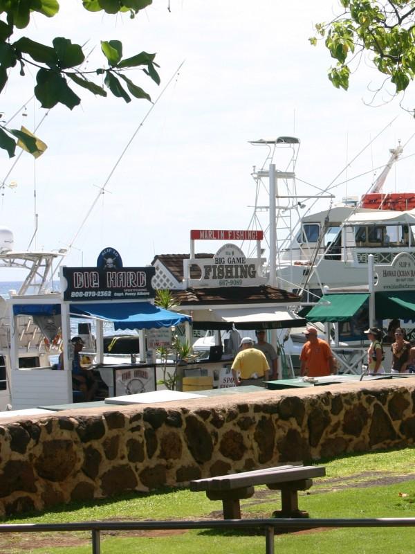 Lahaina harbor fishing boats