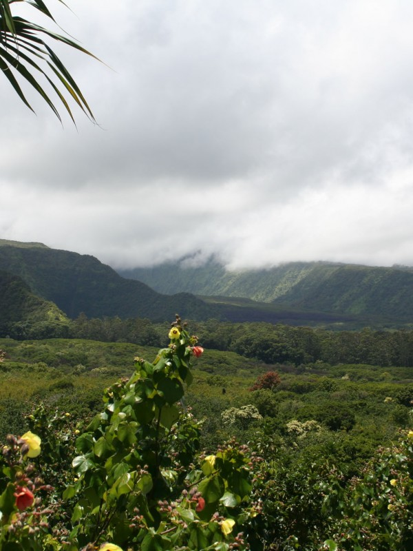 Wailua Valley