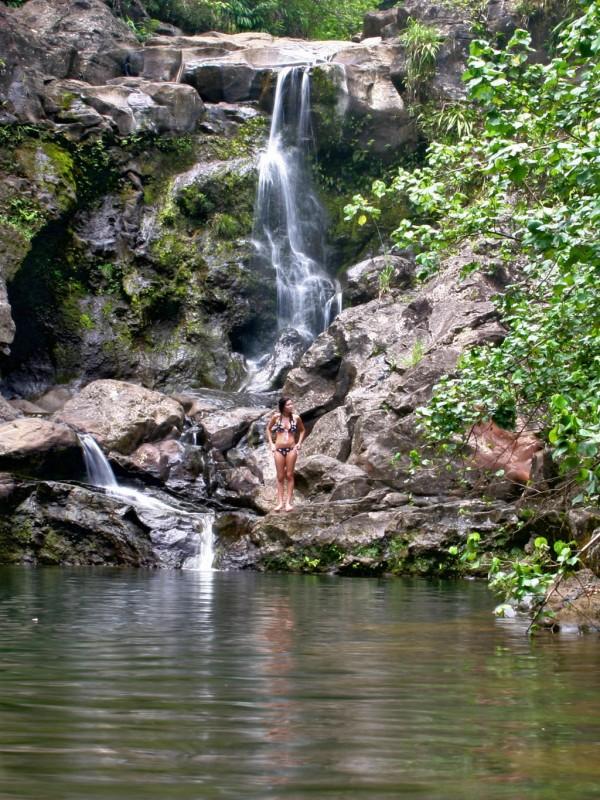 Nailiilihaele Bamboo Forest