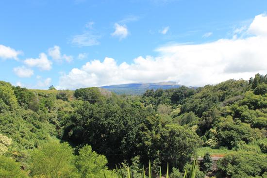 Haleakala View