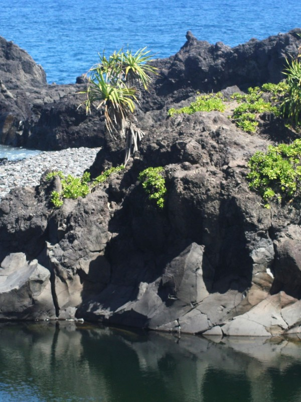 The hala Capped lava island can serve as a leaping point in proper conditions.