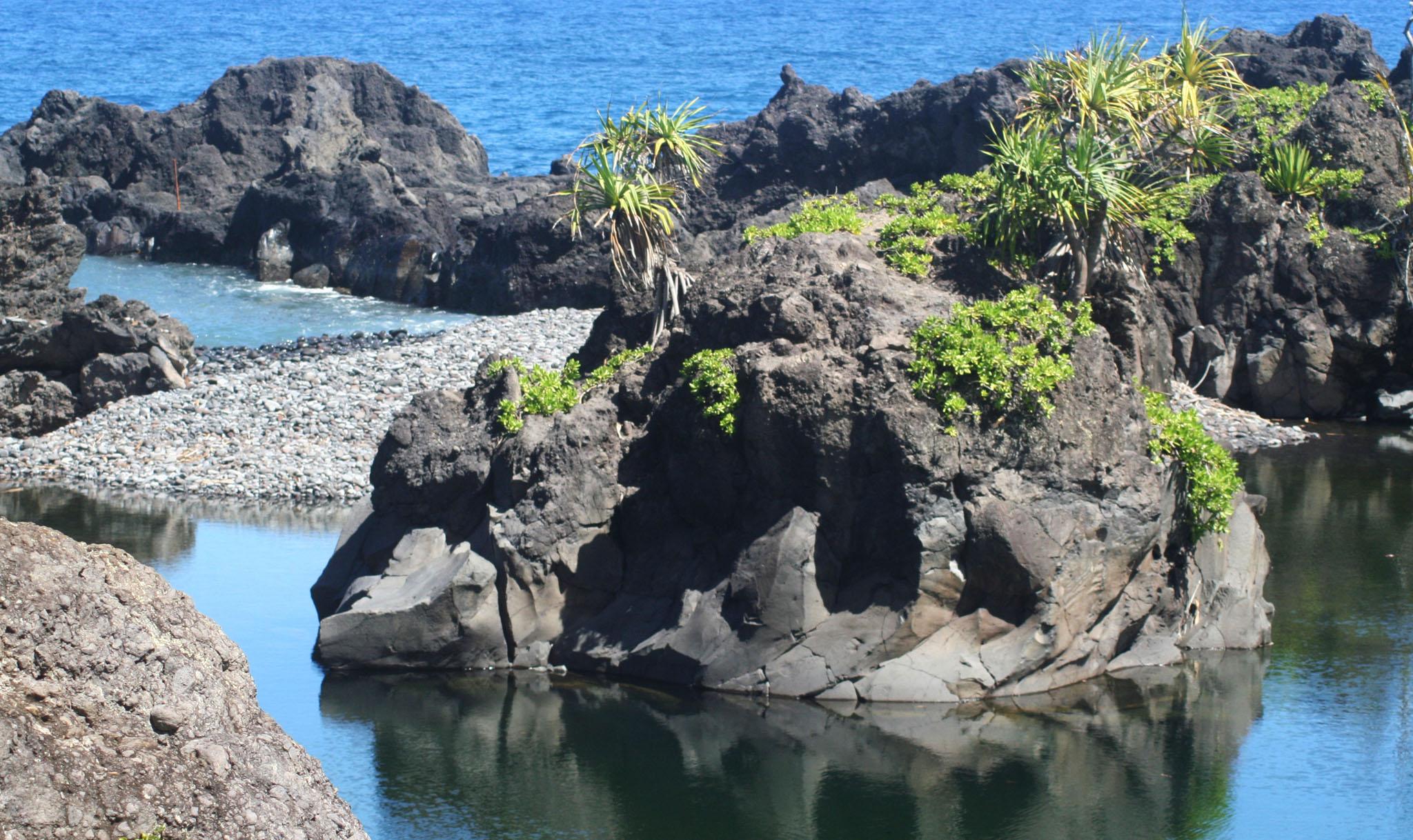 Waioka Pond Aka Venus Pool Maui Guidebook