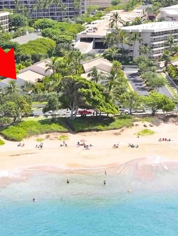 Maui Banyan A201