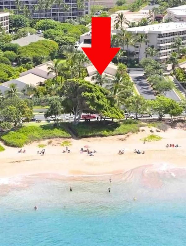 Maui Banyan B202
