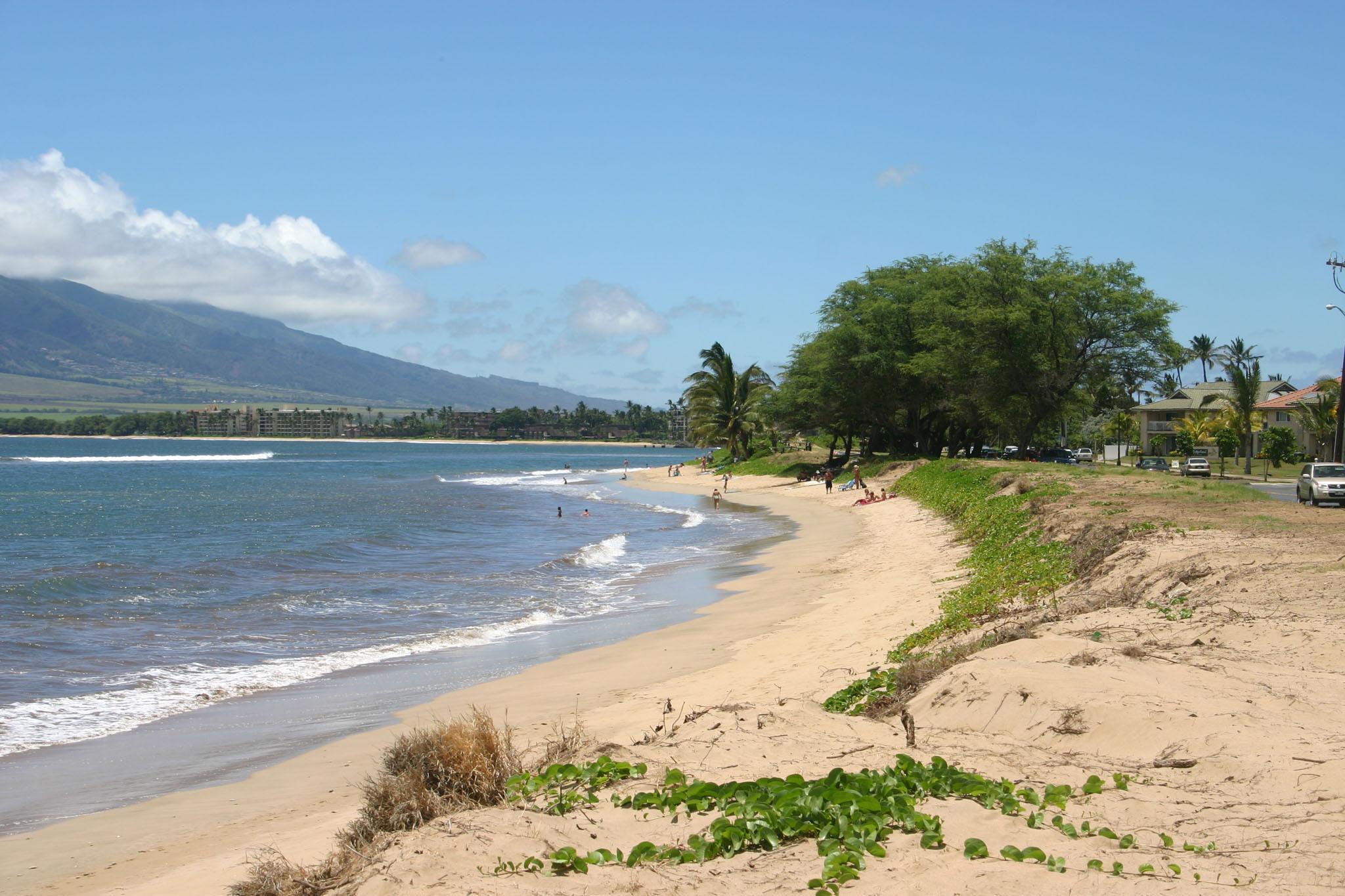 A North Kihei Beach